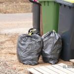 Da gehört der Müll hin, auch Baumüll