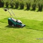 Beim Rasen gibt es endlich viel zu schneiden