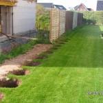 Die Erdlöcher für die Hecke entstehen entlang des Rasenrands