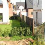 Umlaufende junge Kirschlorbeerhecke am provisorischen Zaun