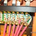 CAT-Kabel am Patchpanel nach T568A angeschlossen