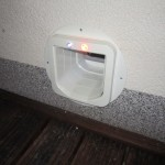 Lichter zeigen, was in der Katzenhütte los ist
