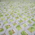 Fertige Rasenwaben gefüllt mit Rollrasen