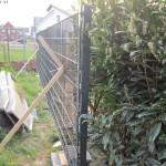 Drei Zaun-Sektionen aufgestellt und einbetoniert